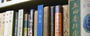 関西沖縄文庫 室内の本棚風景