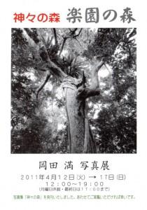 神々の森 楽園の森